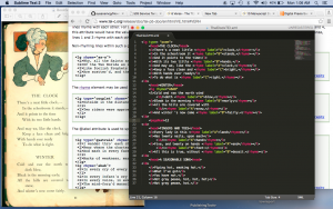 playing in SublimeText!